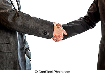 Two businessmen, lawyers or politicians shaking hands