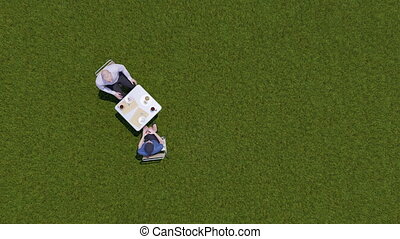 Two businesspeople at lunch on grass top view 4K
