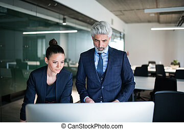 Two businesspeople with computer in an office standing at desk.