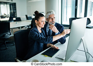 Two businesspeople with computer sitting in an office at desk.