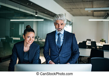 Two businesspeople with computer standing in an office at desk.