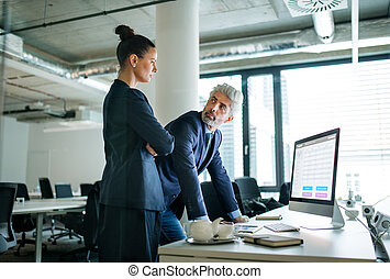 Two businesspeople with computer standing in an office at desk, working.