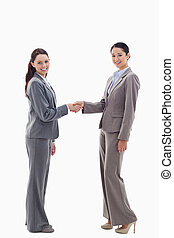 Two businesswomen shaking hands and smiling