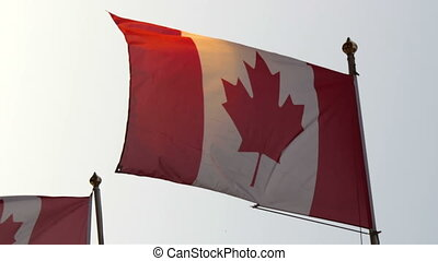 Two Canadian flag slowly waving on the pole