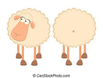 two cartoon sheep