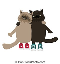 two cats on white background
