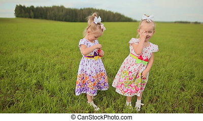 Two charming little twins sisters blow soap bubbles on a green meadow in summer.