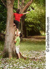 Two children helping and climbing on tree in park - two kids...