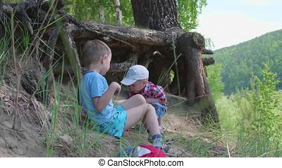 Two children play near a big tree. The roots of a coniferous...
