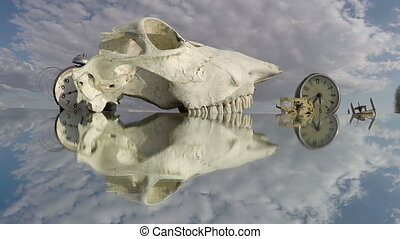 Two clocks and a horse skull on the mirror beneath the...