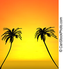 Two coconut trees with sunset view