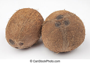 two coconuts on a white background