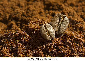 Two coffee beans on ground coffee with white background
