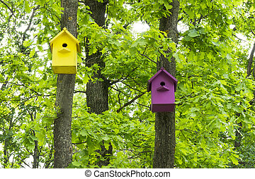 Two colorful birdhouses on trees in the spring forest