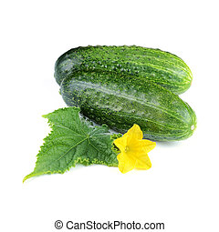 Two Cucumber Vegetables with Leaf and Flower Isolated on...
