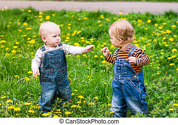 Two cute baby boys on a lawn with dandelions