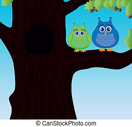 Two cute funny owls sitting