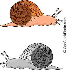 Two cute snails, cartoon on a white background.