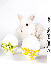 Two decorative eggs with bunny