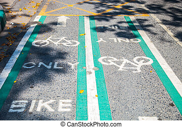 Two direction way bike lane.