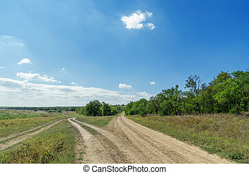 two dirty roads in green landscape