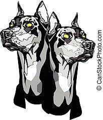 Two Dobermann Pinscher heads in tattoo style.