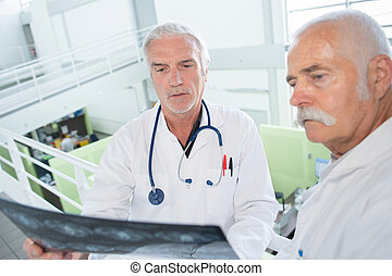 two doctors with xray on white