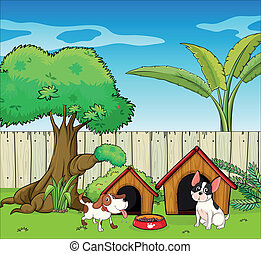 Two dogs inside the fence