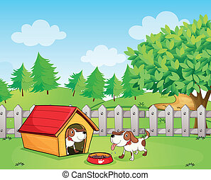 Two dogs inside the wooden fence