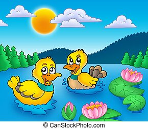Two ducks and water lillies - color illustration.