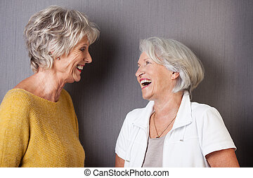 Two elderly female friends sharing a joke standing laughing...