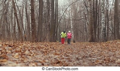 Two elderly woman in autumn park have nordic walking among autumn park