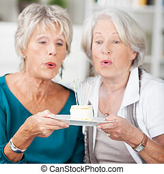Two elderly women eyeing a piece of delicious cake