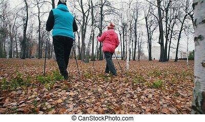 Two elderly women walking on sticks of nordic walking. Back...
