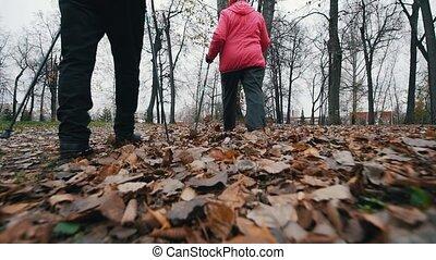 Two elderly women walking on sticks of nordic walking....