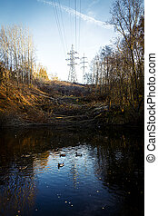 Two electricity pylons surrounded by trees in autumn on a hill