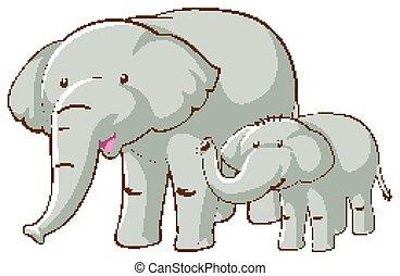 Two elephants on white background