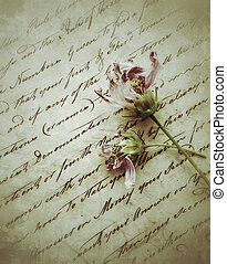 two fading flowers on old writing