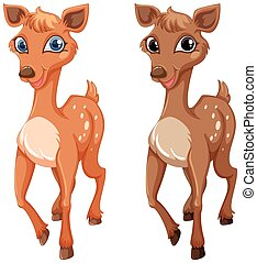 Two fawns on white background