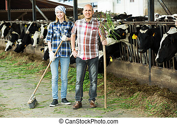 two fermers preparing grass - Young and mature employees ...