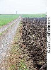 two fields