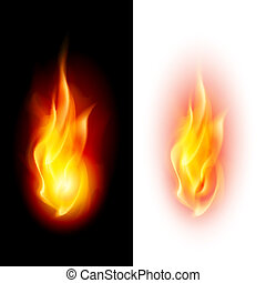 Two fire flames on contrast black and white backgrounds.