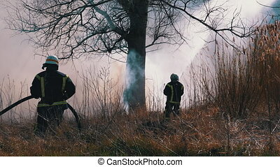 Firefighters in Equipment Extinguish a Forest Fire with Fire Hose. Two fireman puts out a large scale wood fire using a water hose. Strong flames, smoke rise from burning dry bush. Spring. Slow Motion