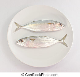 Two fish  on white plate on white background