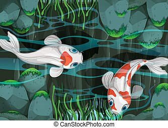 Two fish swimming in the pond