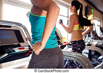 Two fit women running on treadmills in modern gym - Two...