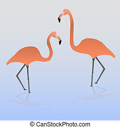 two flamingos on the water eps10