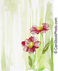 two flowers - watercolor painting of flowers, use as...