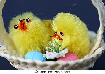 two fluffy chicks in a basket