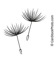 dandelion - two flying seeds of a dandelion for decoration